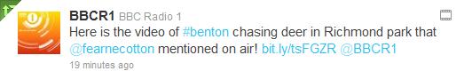 Benton Chasing Deer